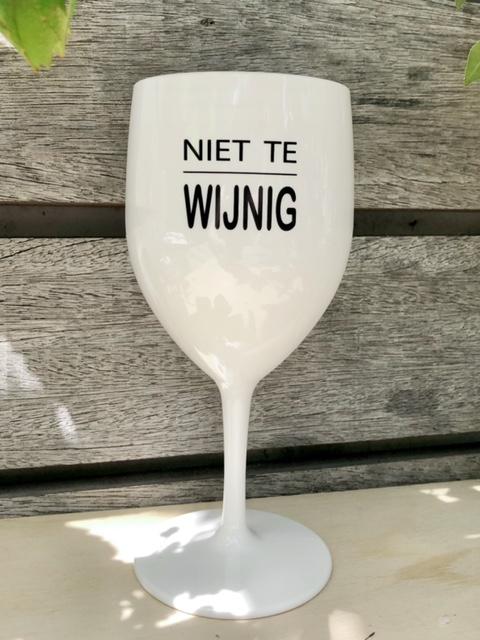 kunststof wijnig wijnglas