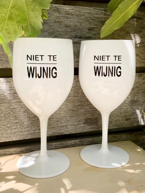 set 2 kunststof wijnglazen