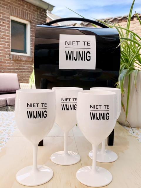 Wijntap + 4 kunststof wijnglazen